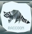 origami standing raccoon vector image