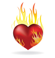 heart fire vector image
