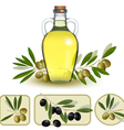 Bottle of oil with green olives and olive oil vector | Price: 1 Credit (USD $1)