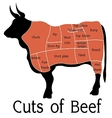 cuts of beef vector image