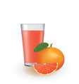 grapefruit juice in a glass vector image vector image
