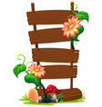 wooden banner with flower vector image vector image
