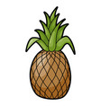 pineapple tropical aromatic large juicy sweet vector image vector image