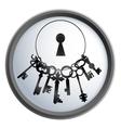 bunch keys vector image vector image
