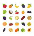 fruit flat icons vector image