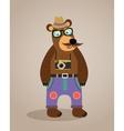 Hipster geek animal teddy bear vector image vector image