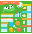 Milk infographic layout poster vector image