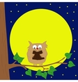 Owl sitting on a branch reading book by moonlight vector image vector image