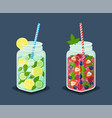 set mugs refreshing drinks with fresh cocktails vector image vector image