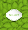 Spring Card on Seamless Stylish Pattern with Green vector image vector image