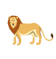 stylized of lion vector image vector image