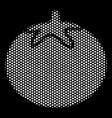 white dot tomato vegetable icon vector image vector image