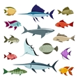 Colored fish icons vector image