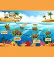 life cycle sea turtle vector image vector image