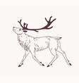 outline drawing walking male deer reindeer vector image vector image