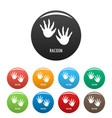 racoon step icons set color vector image vector image