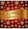 Red Background with Snowflakes and Greeting vector image vector image
