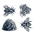 set bee wasp honeycombs and hive vintage vector image vector image