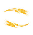wheat ears frame vector image vector image
