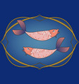 zodiac sign pisces two fish inside in an vector image vector image