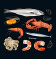 seafood set vector image