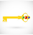 magic key icon isolated vector image