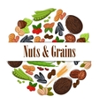 Nutritious nuts and grains in round shape emblem vector image vector image