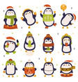 christmas penguins cute holiday winter penguins vector image