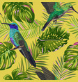 floral tropical seamless pattern with humming bird vector image