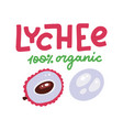pink lychee open tropical exotic fruit organic vector image