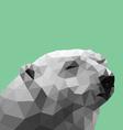 Poly Polar Bear vector image vector image