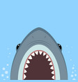 big shark with open jaws vector image vector image