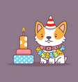 corgi dog celebrate birthday character vector image vector image
