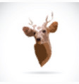 deer head on white background wild animals vector image vector image