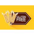 gluten free vector image vector image