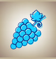 grapes sign sky blue icon vector image