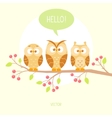 owls three vector image vector image