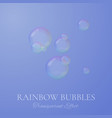 rainbow soap bubbles in realistic style vector image