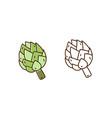 set natural artichoke in monochrome vector image vector image