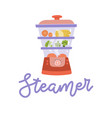 steamer food icon cooking kitchen isolated vector image