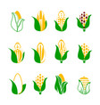 corn icon set isolated on white background vector image vector image