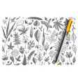leaves hand drawn doodle set vector image vector image