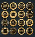 luxury golden design elements collection 5 vector image vector image