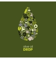 olive oil drop vector image vector image