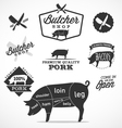Pork Cuts Diagram and Butchery Design Elements vector image