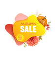 thanksgiving sale web banner autumn seasonal vector image