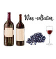 two bottles of red wine with a glass and grape vector image
