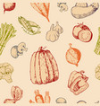 vegetables handdraw sketch vegetably vector image
