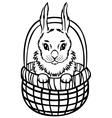 bunny basket vector image