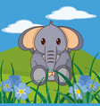 elephant cute animal in landscape vector image
